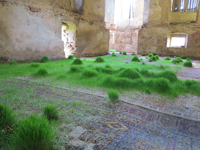 i grew grass on rugs in a castle (2012) Martin Roth