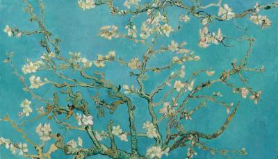 Vincent Van Gogh: Mandulavirágzás_forrás: vangoghmuseum.nl